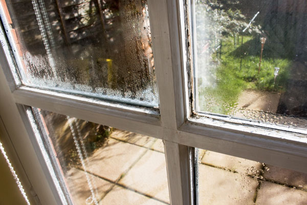 window condensation portland oregon clear choice home window repair